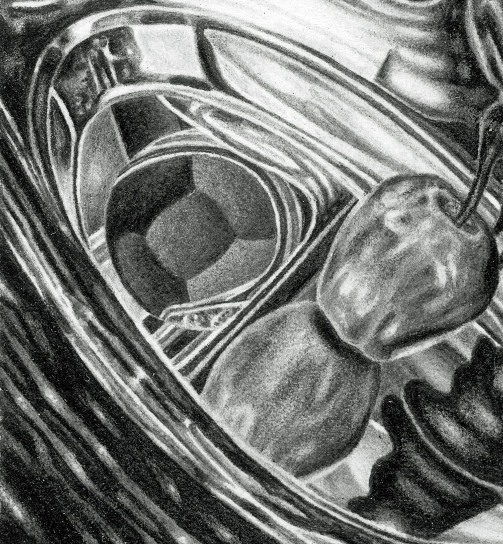 INTERIORS, detail of apple and reflection