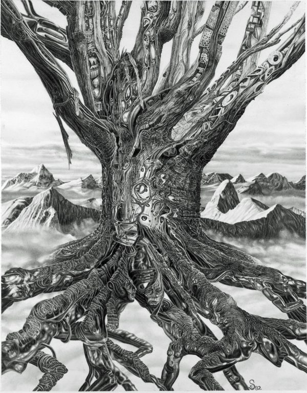 TREE, graphite drawing
