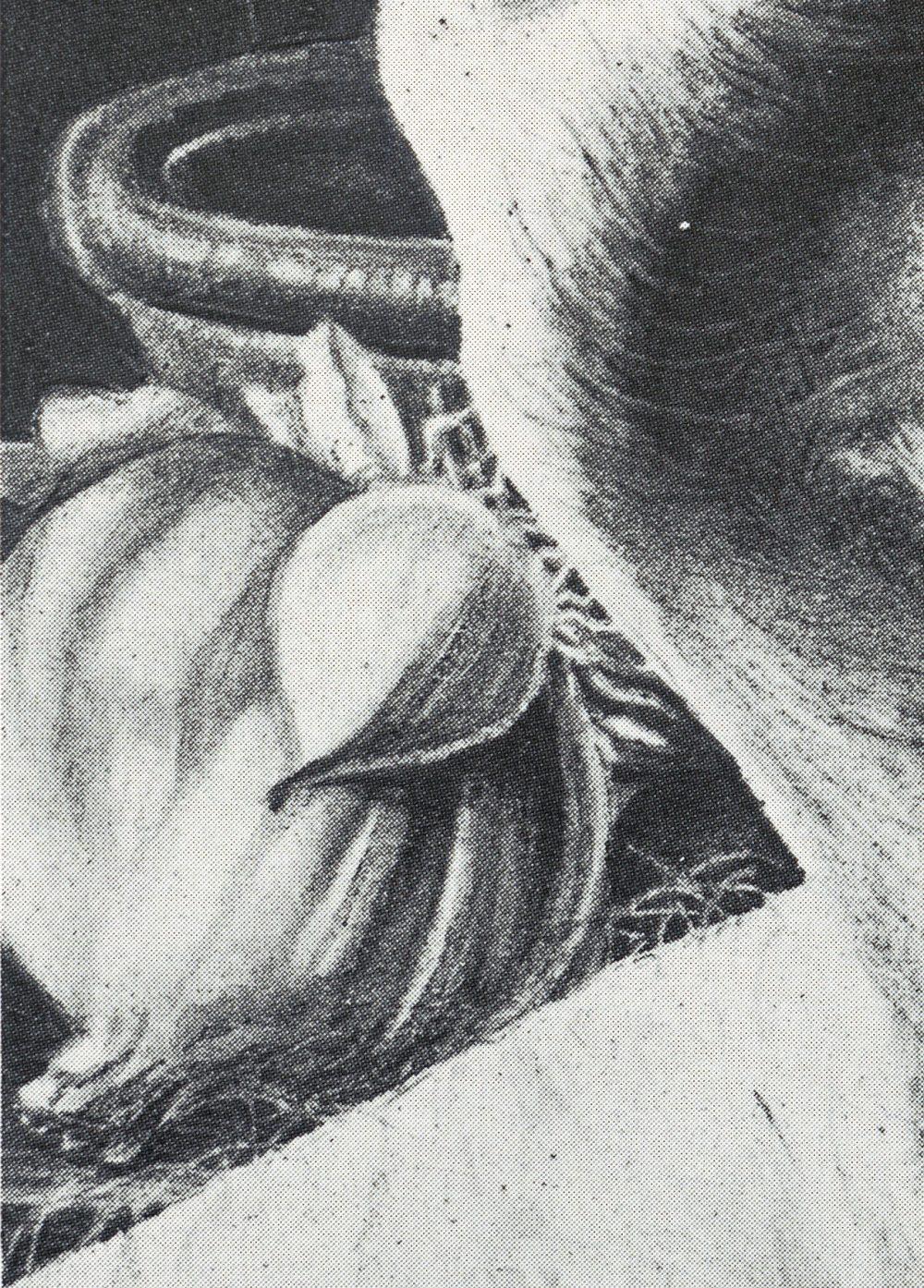 EGGS, detail of garlic