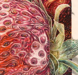 RIPE, painting detail, by Steven E. Counsell
