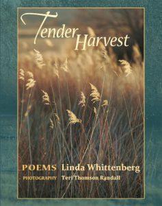 TENDER HARVEST by Linda Whittenberg